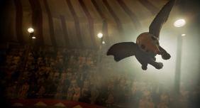Dumbo13