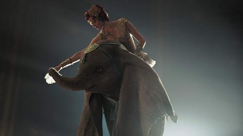 Dumbo16